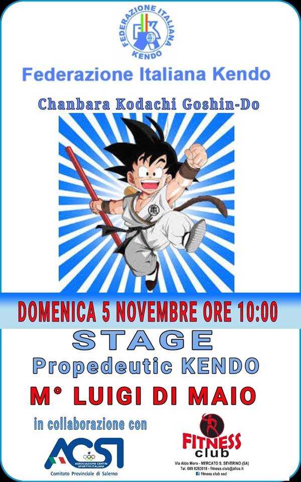 Stage Propedeutic Kendo